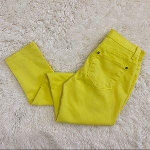 ❄️Francesca's Birdcage Yellow Stretch Skinny Jeans